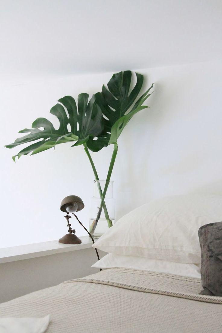 selinesteba.com - banana-leafs-cupofjocom-