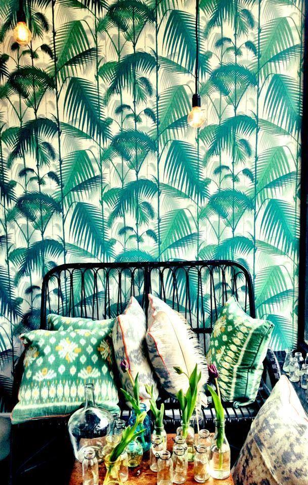selinesteba.com - cole-and-sun-palmtree-wallpaper