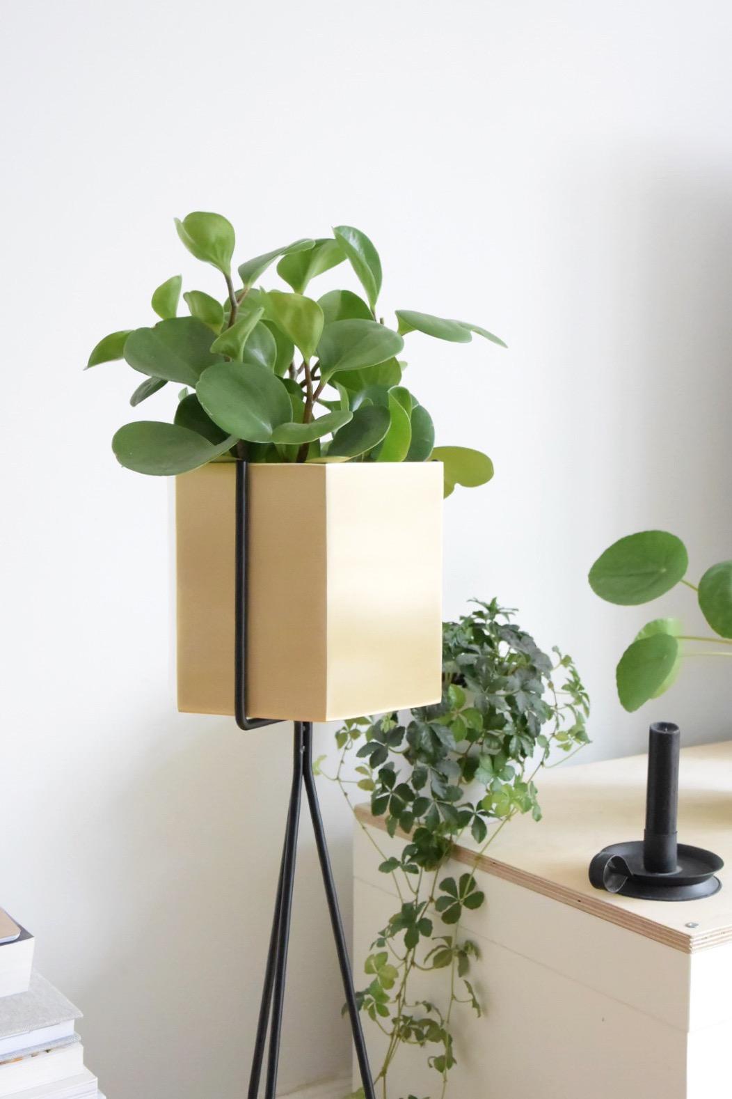 selinesteba.com - Ferm Living Misterdesign.JPG