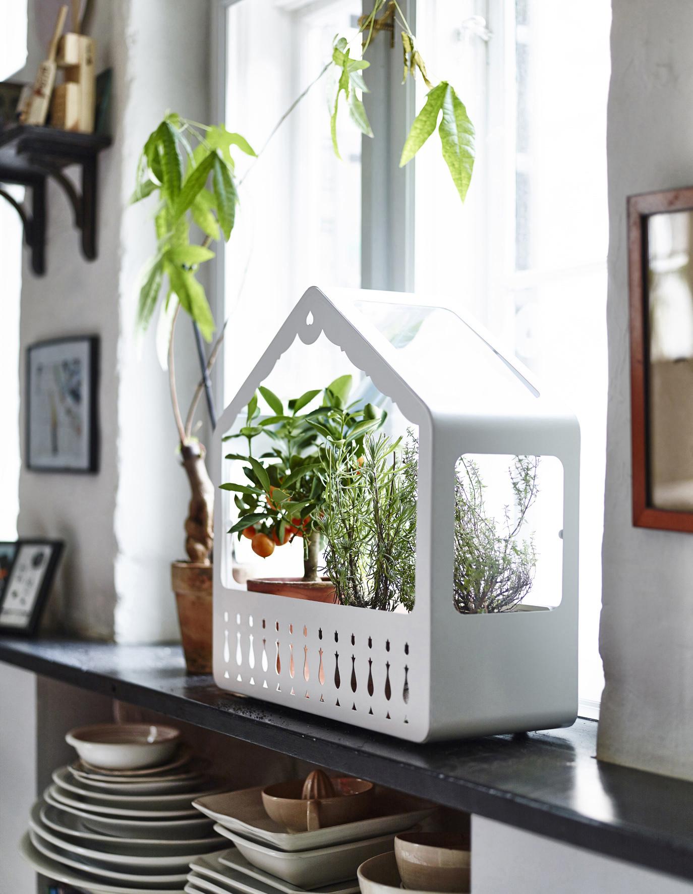 selinesteba.com - greenhouse2-1