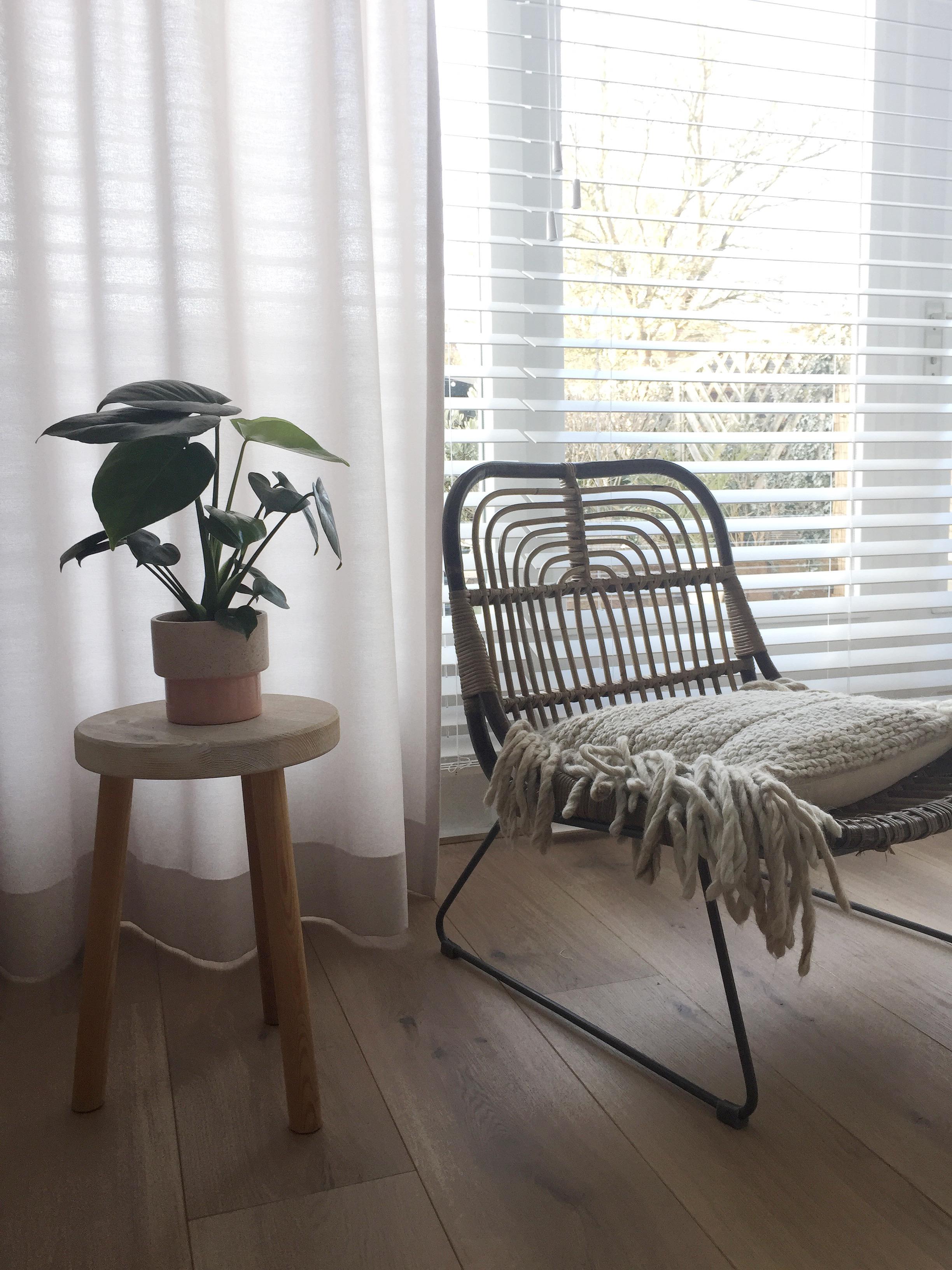 selinesteba.com - Inside blinds 2.JPG