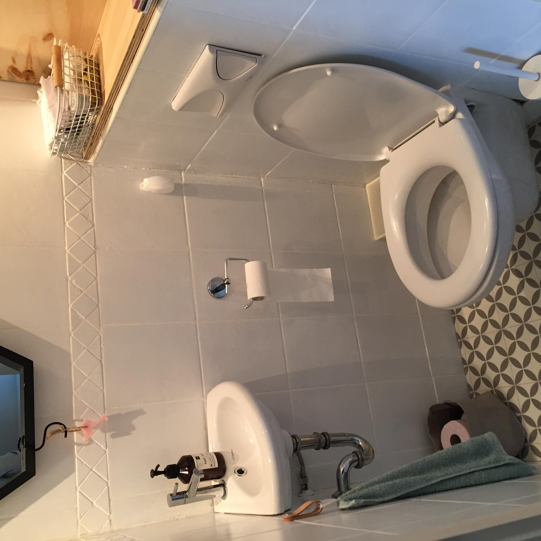 selinesteba.com - nieuw toilet.JPG