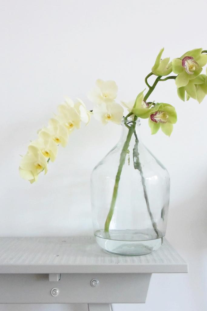 selinesteba.com - orchidee04.jpg