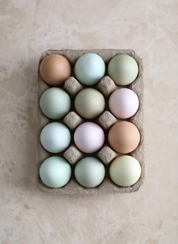 selinesteba.com - pastel-eggs-camillestylescom