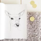 selinesteba.com - tekening volwassen hert Seline Steba.JPG