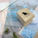 selinesteba.com - winactie-02
