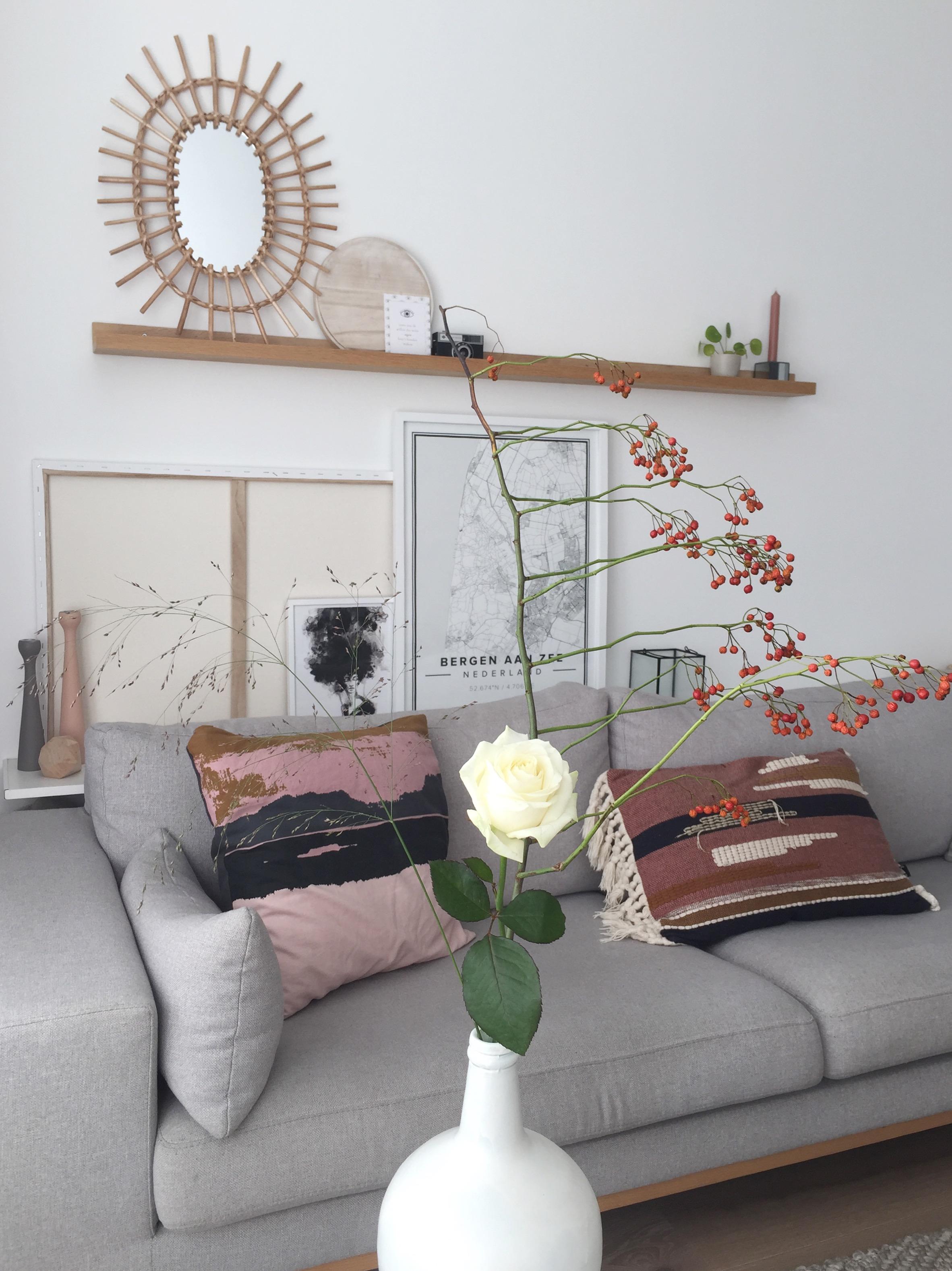 selinesteba.com - witte roos 03.JPG